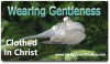Wearing Christ's Gentleness